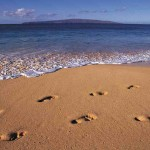 footprints in sand sm