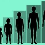 human_growth