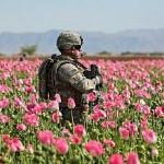 legacy in afghanistan