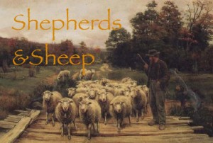 Sheep and Shepherds 2 A. Bryan Wall