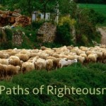 sheep paths of righteousness