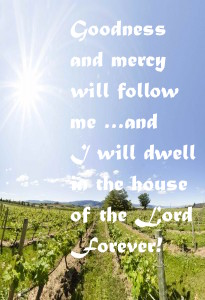 goodness and mercy will follow me