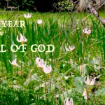 new year for Israel of God
