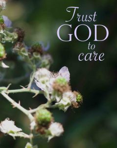 trust God to care sm