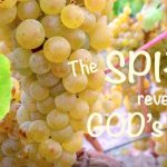 spirit reveals God's nature