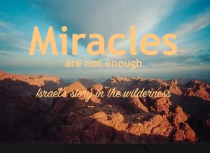 Israel's story in the wilderness