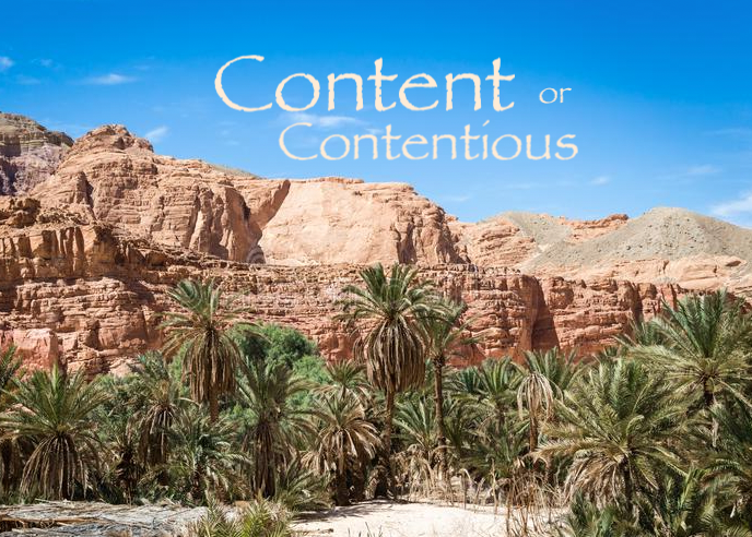Content or contentious Israel in the Wilderness