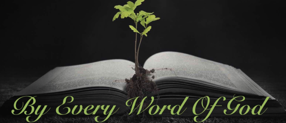 every word of God