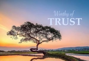 Crisis of Confidence - Who is trustworthy?